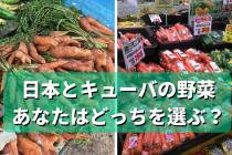 自然とは何か?「F1」がないキューバの野菜と日本の違い