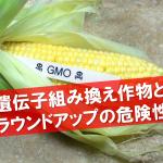 遺伝子組み換え(GM)作物とラウンドアップの抱き合わせ、遺伝子組み換えによる健康被害とTPP